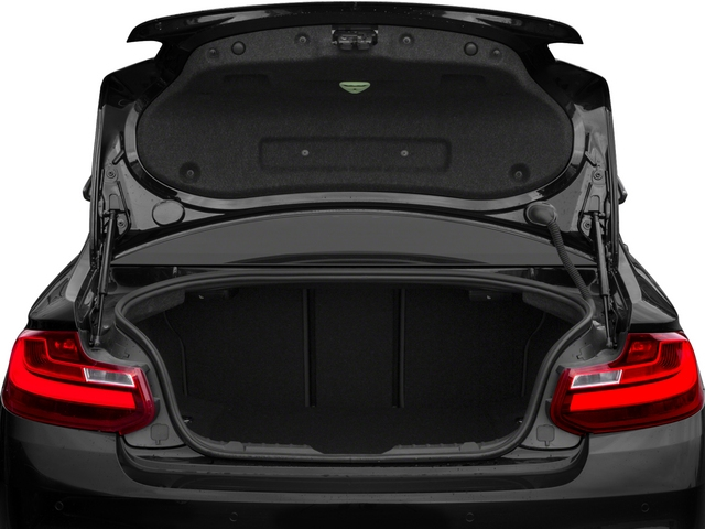 2015 BMW 2 Series M235i - 17091969 - 11