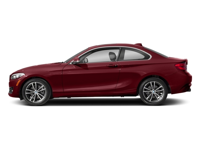 2018 BMW 2 Series 230i xDrive - 17176078 - 0